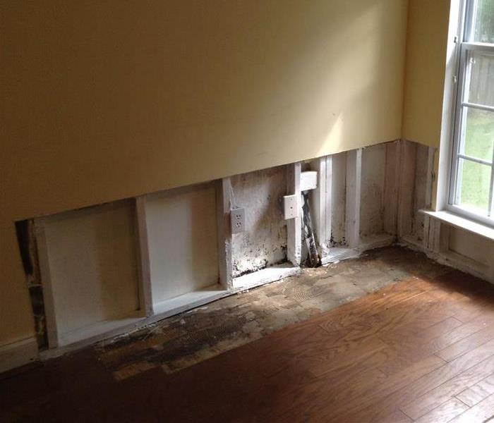 Residential Mold in Shelby County After